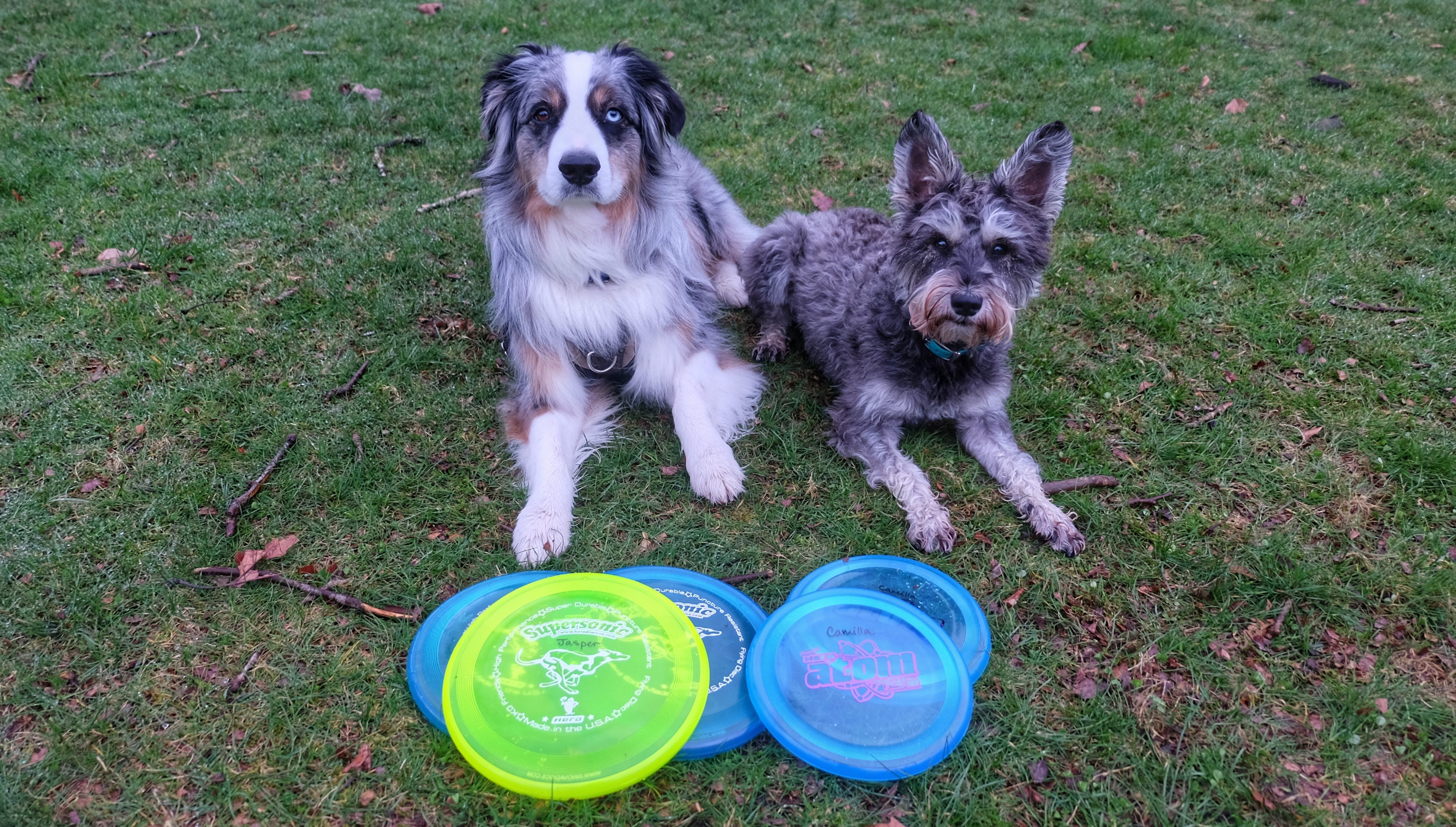 Product Review: Hero Disc – Super Sonic 215