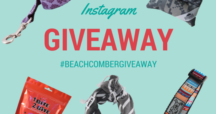 INSTAGRAM GIVEAWAY! Meet the Vendors